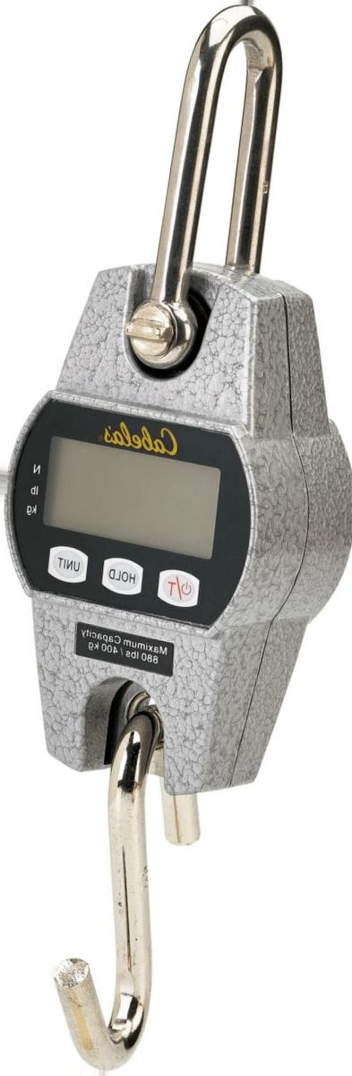 Cabela's 880-lb. Digital Scale