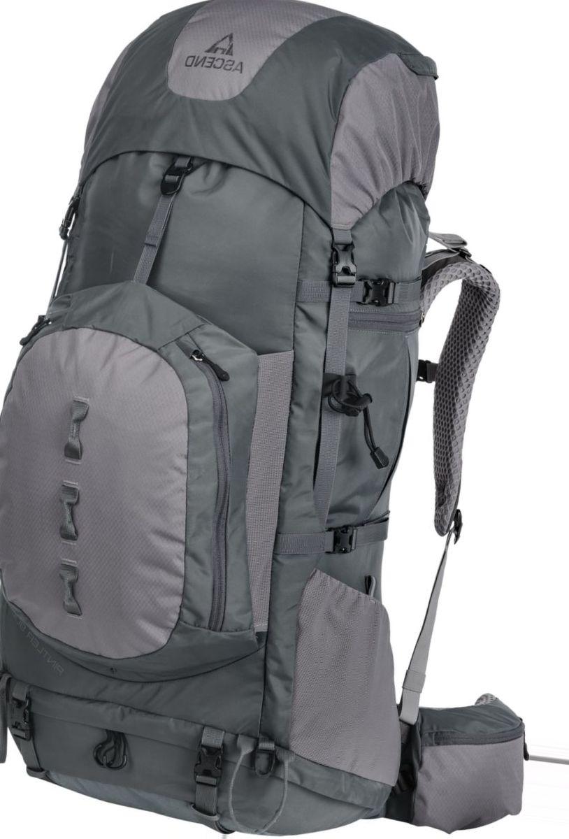 Ascend® Pintler 90L Backpack