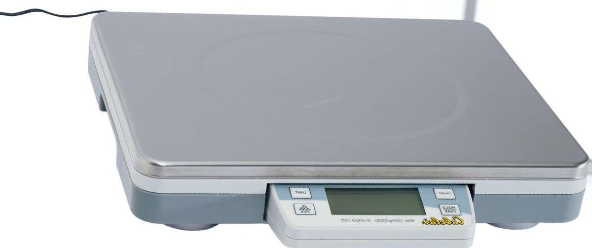 Cabela's 220-lb. Digital Platform Scale