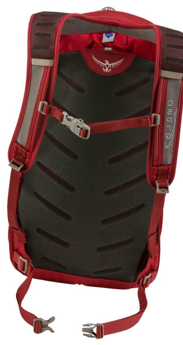 Osprey® Daylite Plus Hiking Backpack