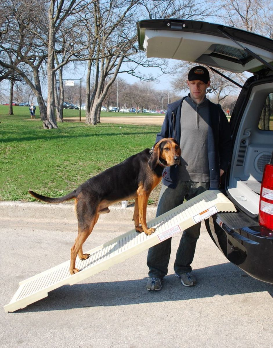 PetSTEP® Folding Pet Ramp