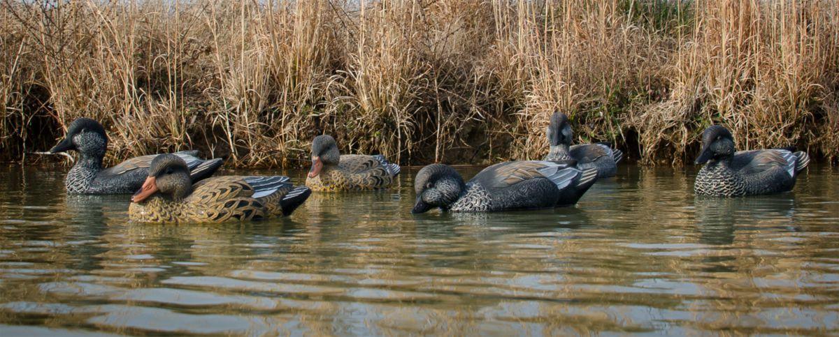 Higdon Outdoors Standard Gadwall Duck Decoys – Six-Pack