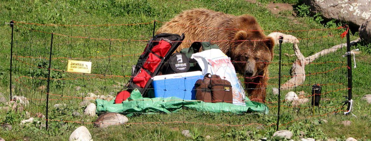 UDAP Bear Shock Food-Storage Eletric Fence
