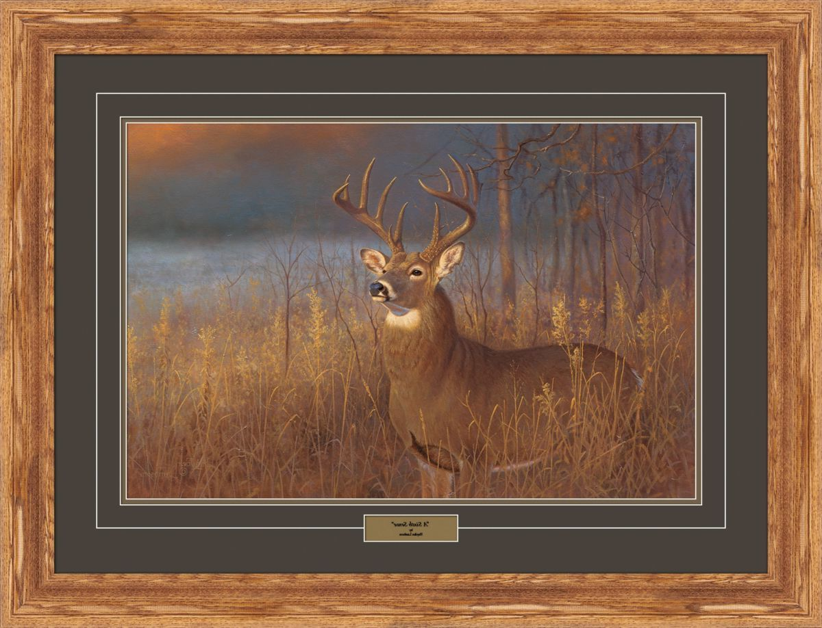 Reflective Art Hayden Lambson Whitetail Limited Edition Framed Prints – A Sixth Sense
