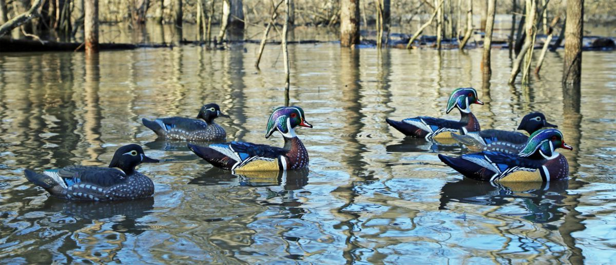 Dakota Decoy Floating Wood Duck Decoys – Six-Pack