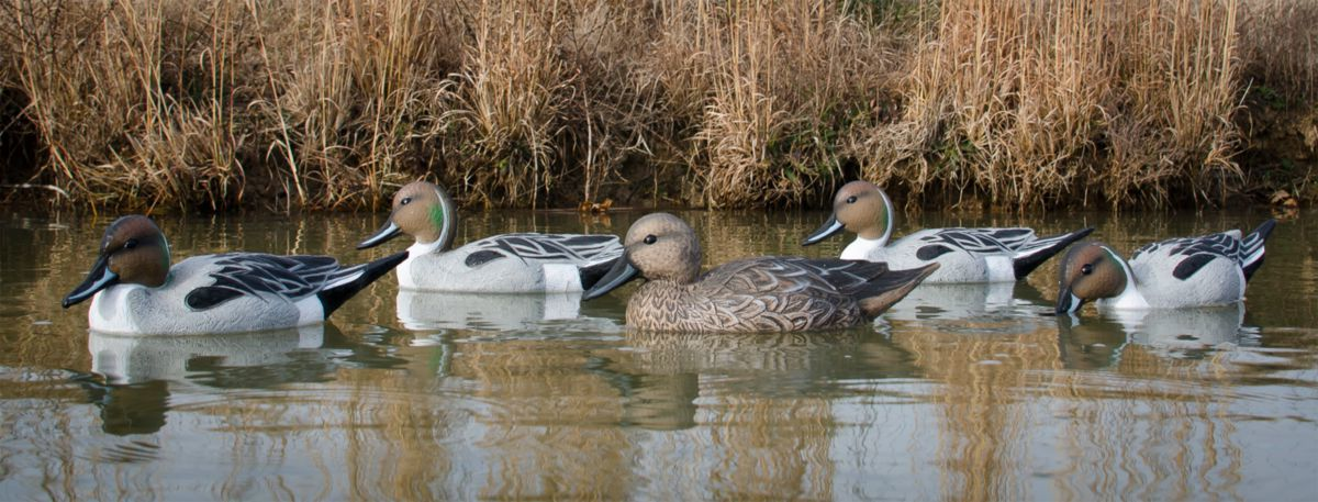 Higdon Outdoors Standard Pintail Duck Decoys – Six-Pack