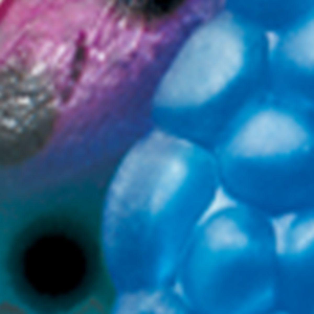 Blue Fox® Rattlin' Pixee® Spoons – Per Each