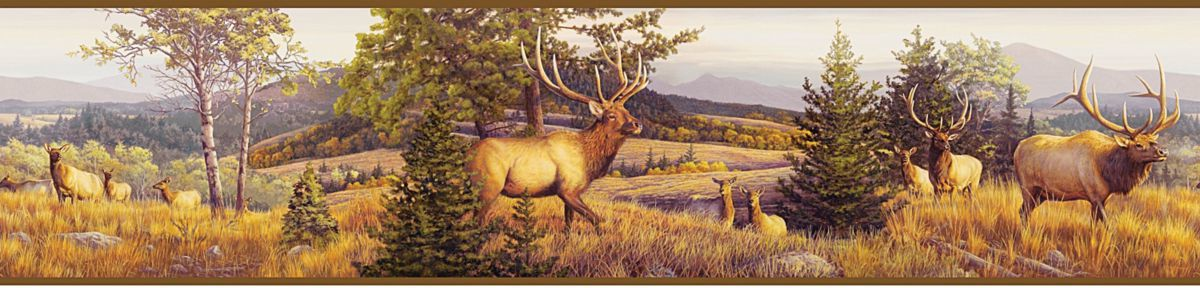 Hautman Elk Mountain Border