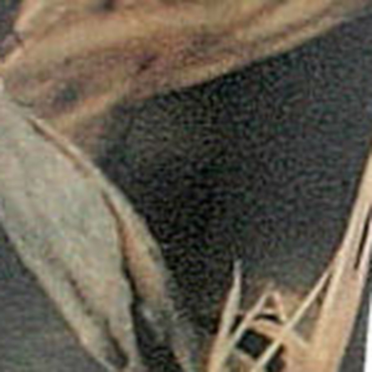 Sean Mann Shoreman XP-1 Goose Call