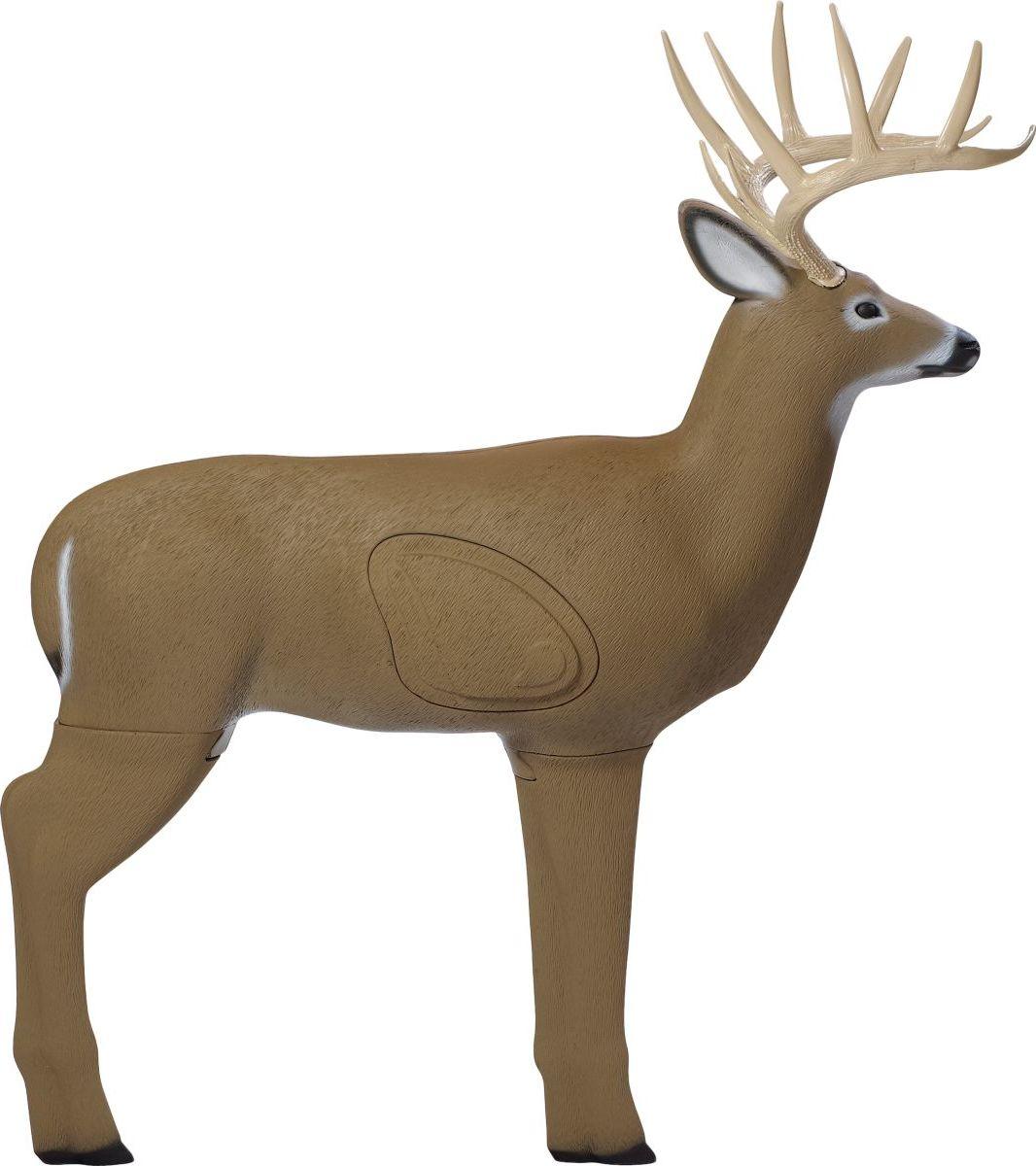 Shooter™ Buck 3-D Archery Target
