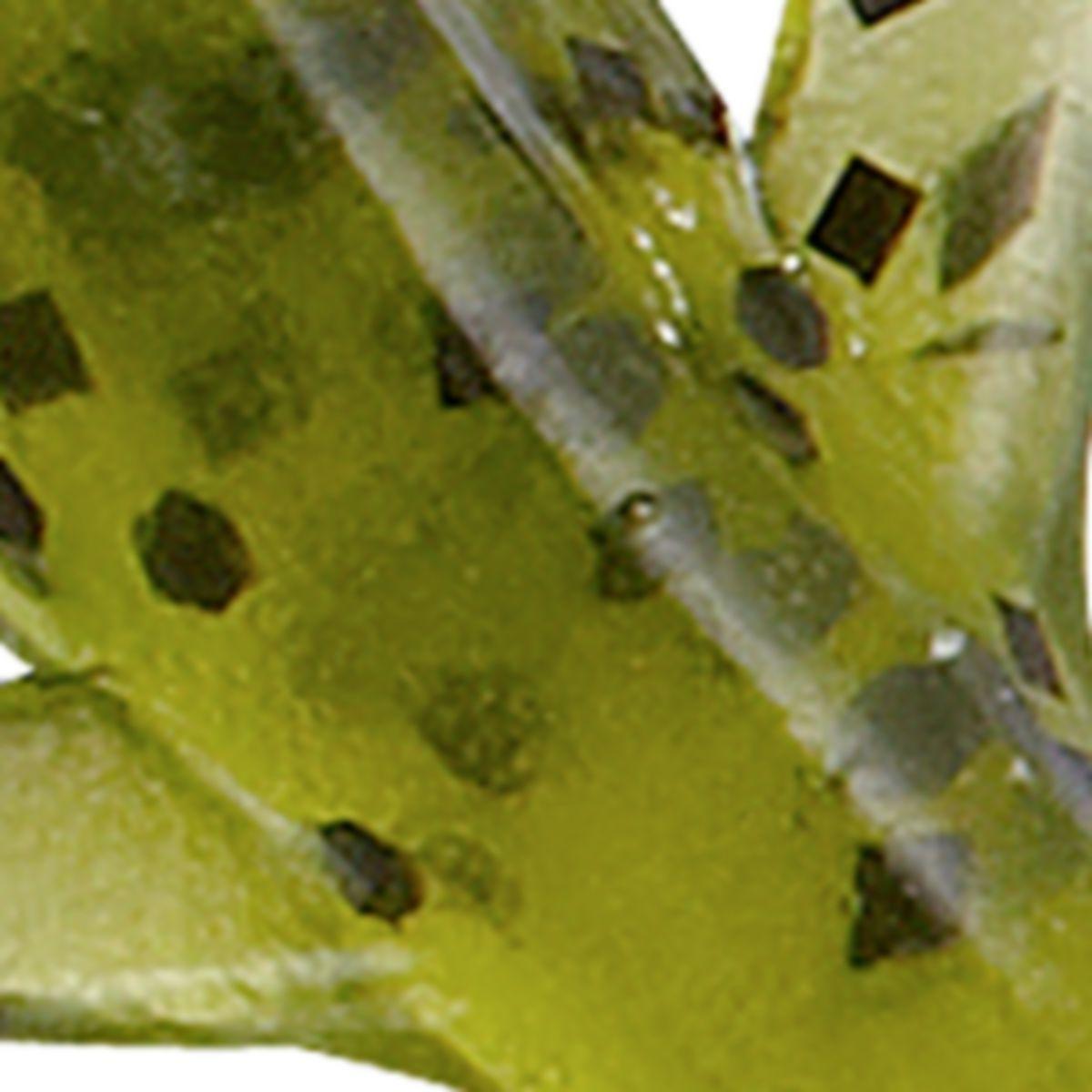 Bass Pro Shops® Squirmin'® Lizard