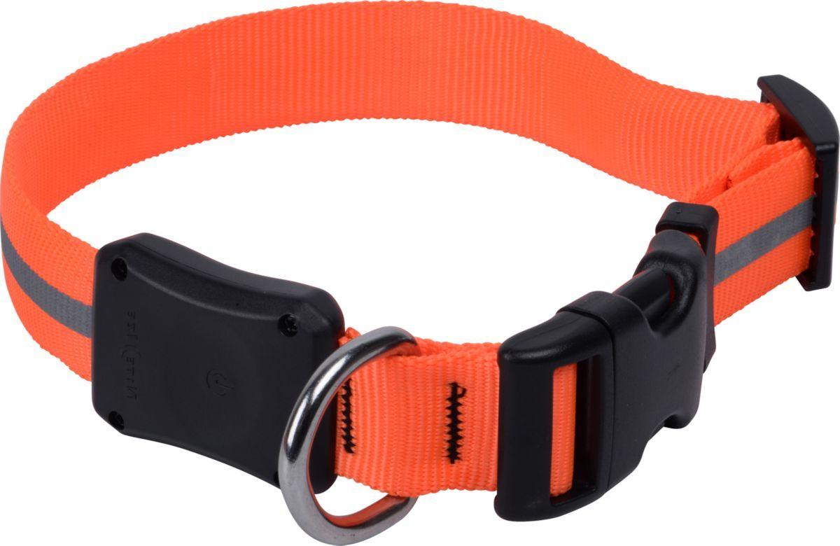 Nite Ize® Nite Dawg Dog Collar