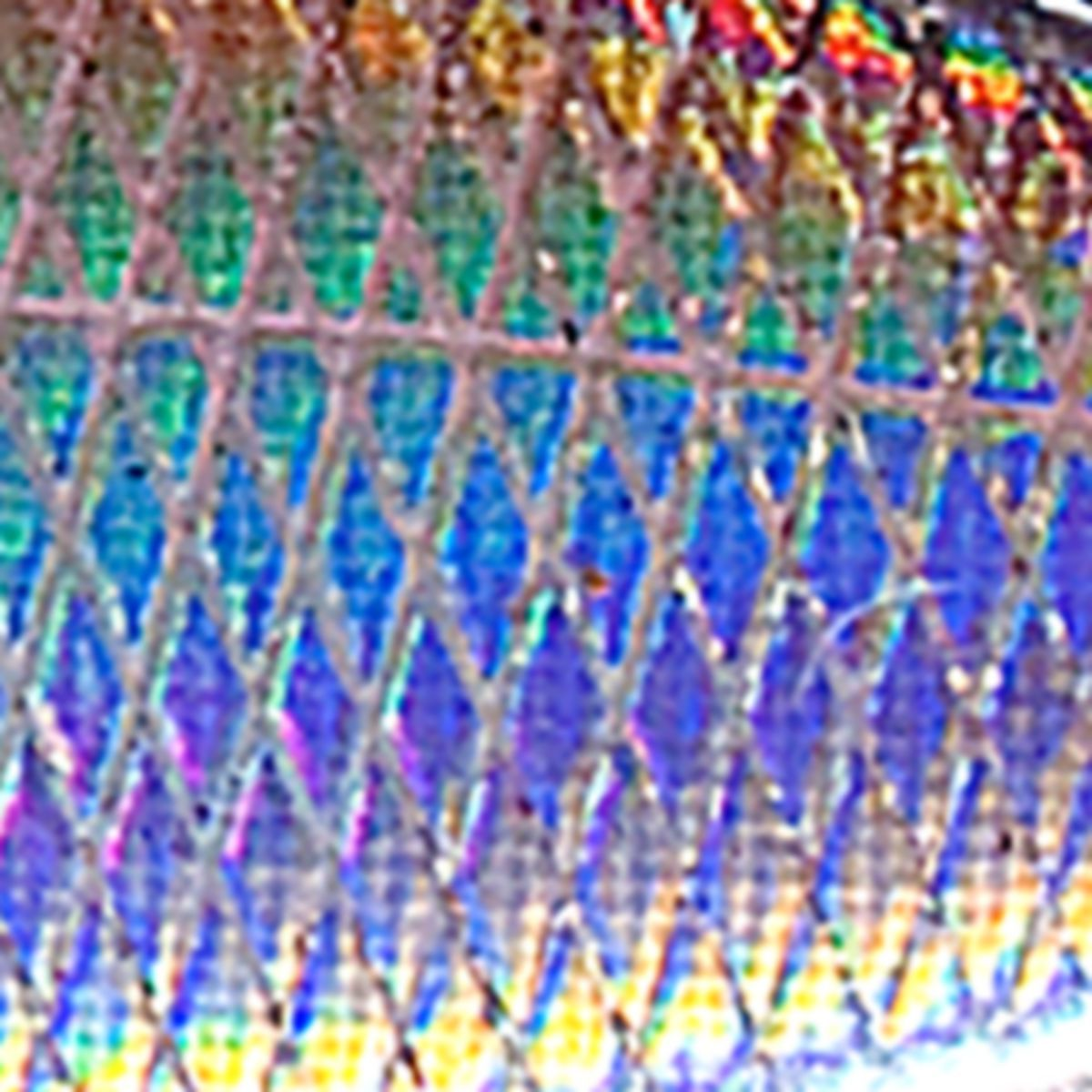 Bass Pro Shops® XTS™ Rattle Shad®