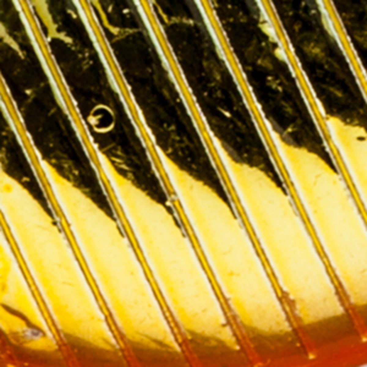 Bass Pro Shops® XPS® Rattle Shad®