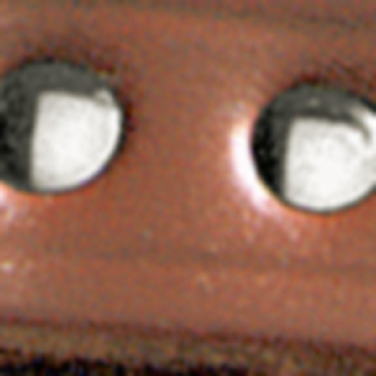 Cabela's Identification Collars