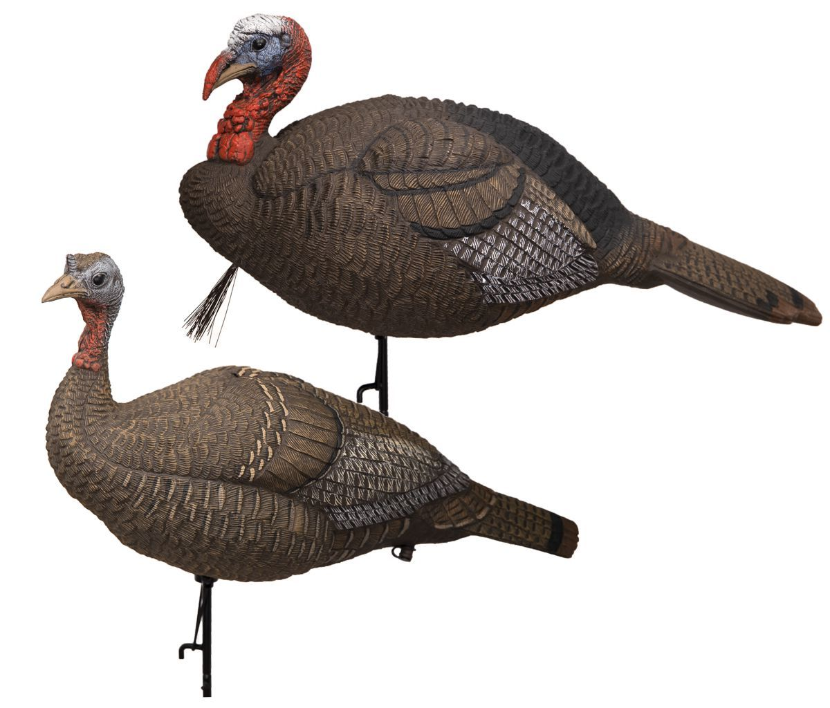 Lucky Duck® HD Collapsible Jake/Hen Turkey Decoy Combo