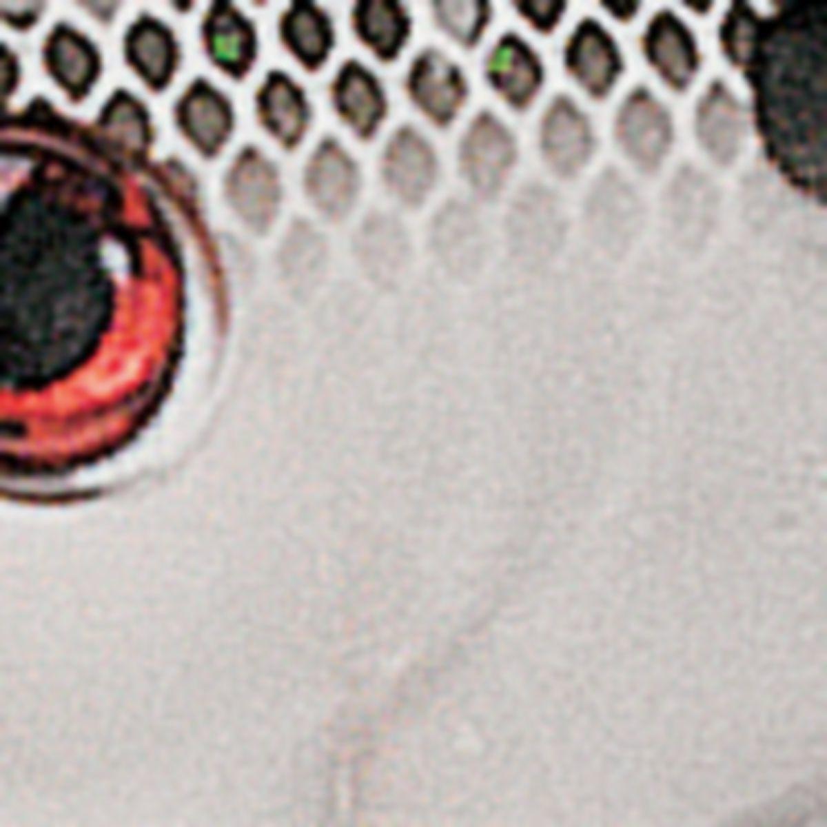 Strike King® Red Eye Shad