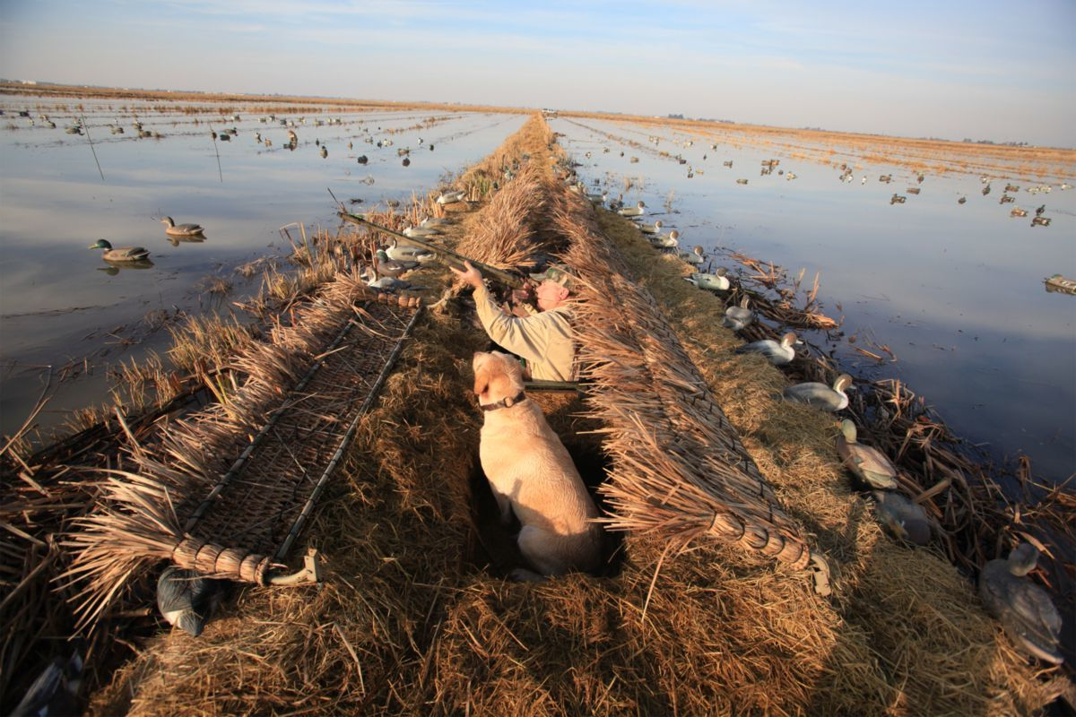 Gibson Duck Blind Covers – Frame with Grass