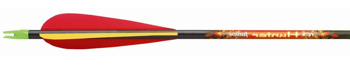 Beman ICS Hunter Junior Arrows – 12-Pack