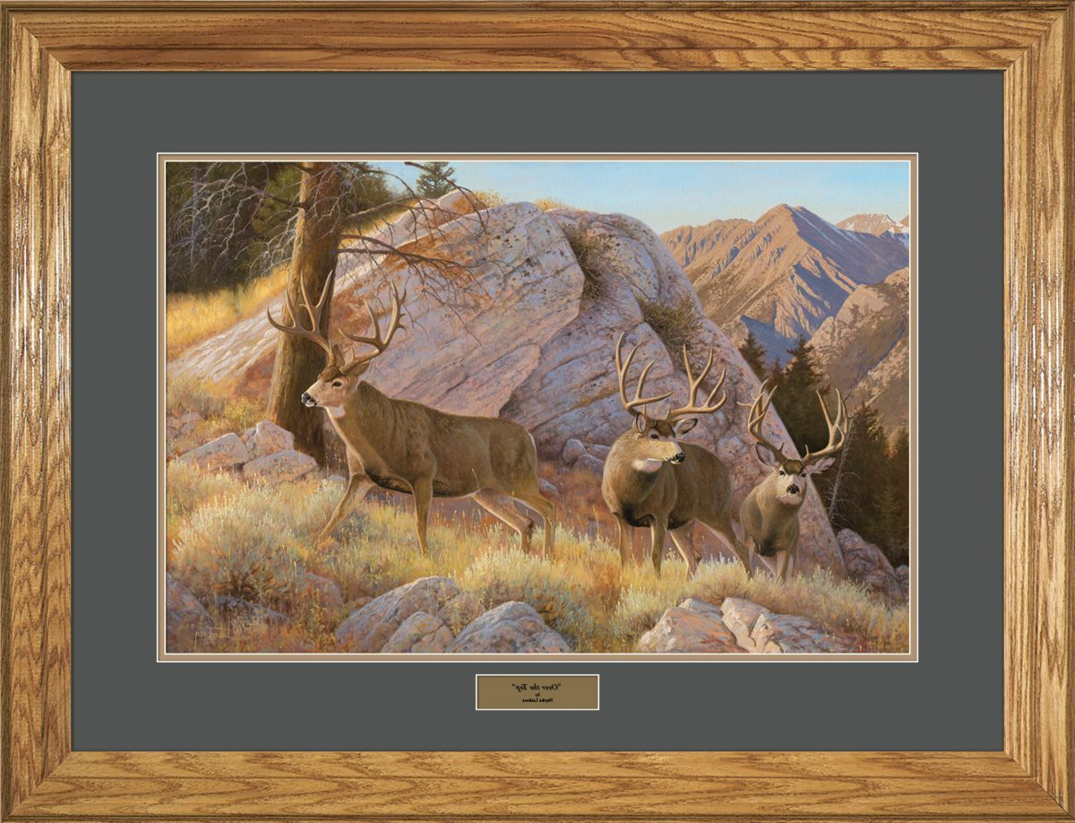 Reflective Art Hayden Lambson Limited Edition Mule Deer Framed Print – Over The Top