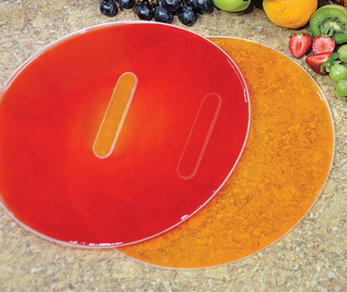 Cabela's Dial Dehydrator Fruit Roll-Up Tray
