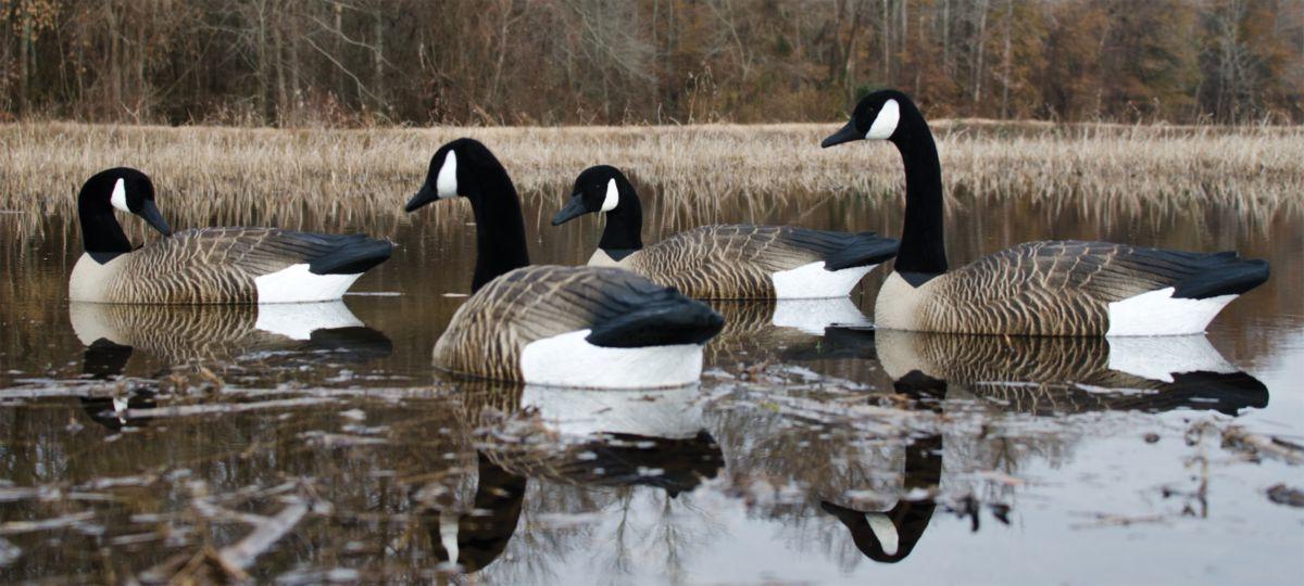 Higdon Outdoors Alpha Magnum Canada Goose Floater Decoys – Four-Pack