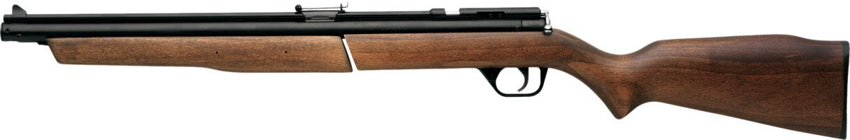 Benjamin® Air Rifle