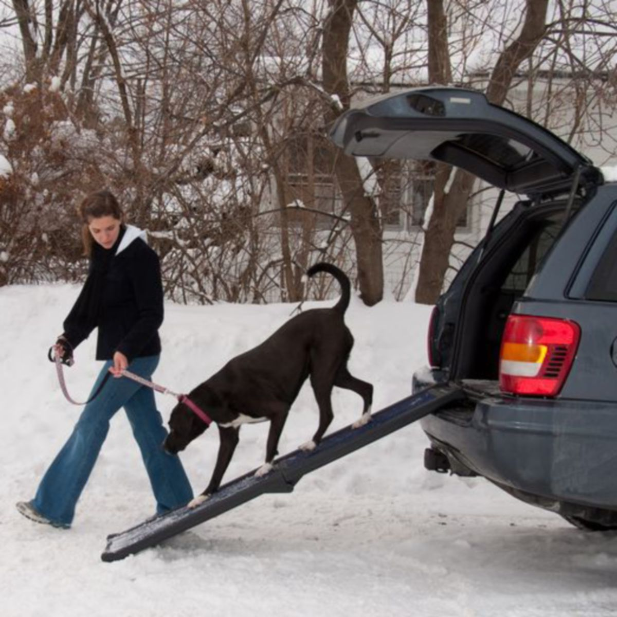 Pet Gear Travel Lite Full Length Bi-Fold Pet Ramp