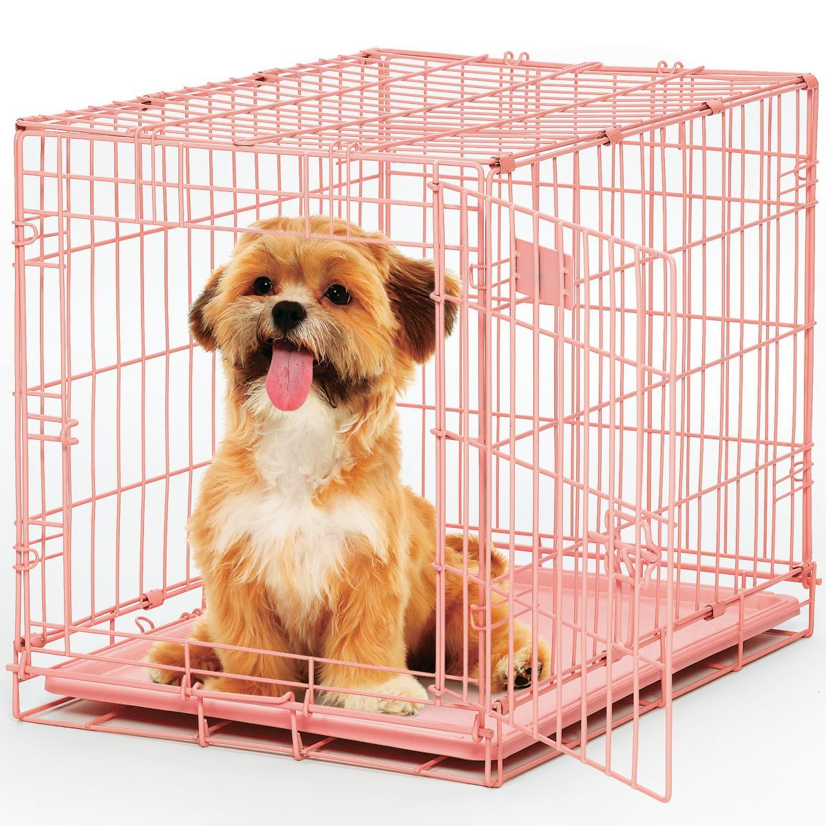 MidWest® Color Single-Door I-Crate Dog Crate
