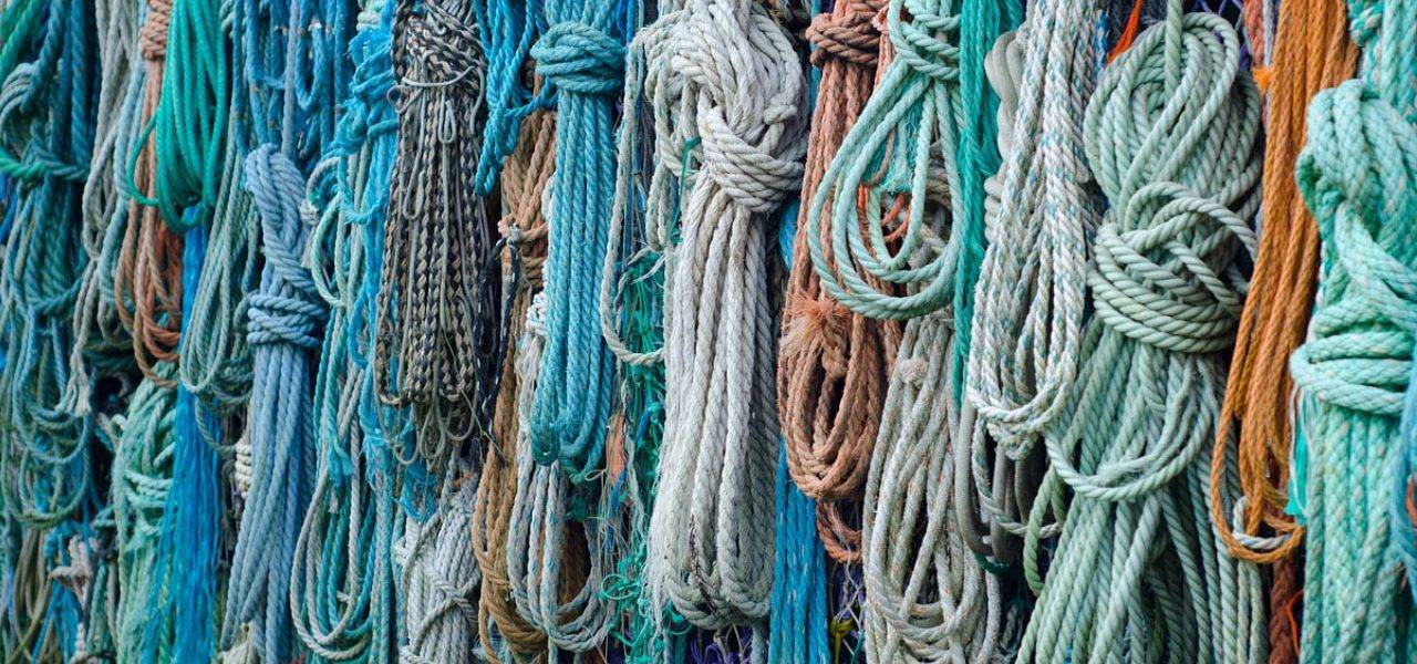 fishing knots for a hook