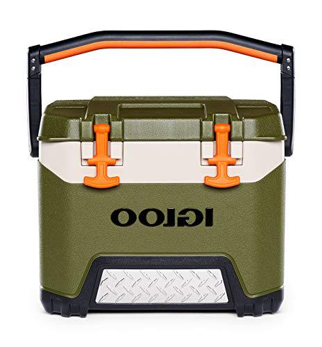 Igloo BMX cooler under $100